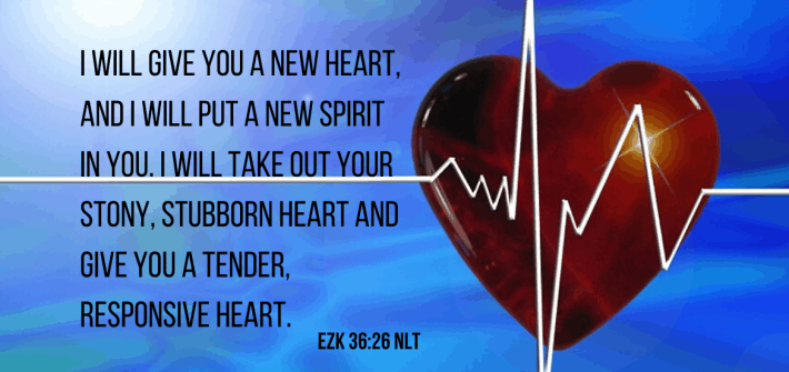 We give God our old stony hearts and he gives us new ones in return. How well do we follow his heart recepient after-care protocol?