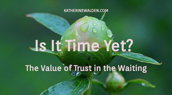 The Value of Trust in the Waiting